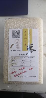 吉林省吉林市永吉县东北大米 一等品 一季稻 粳米