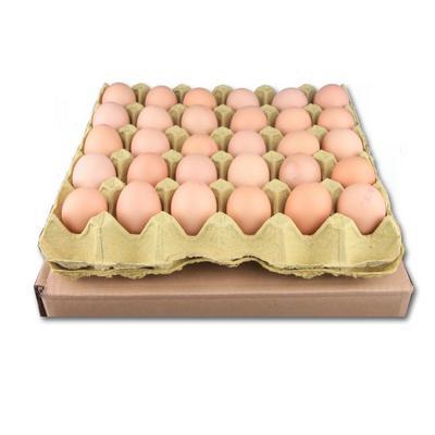 江西省吉安市吉水县普通鸡蛋 食用 箱装
