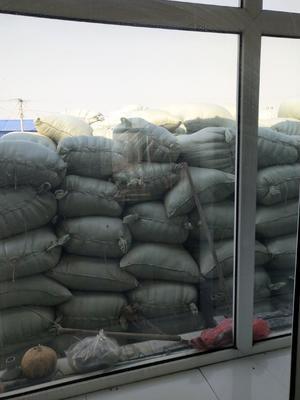 这是一张关于稻花香 中稻/一季稻 的产品图片