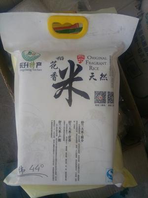 吉林省吉林市舒兰市长粒稻 晚稻