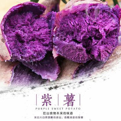 湖南省长沙市长沙县越南紫薯 3两~6两