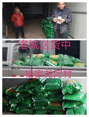 山东省潍坊市寿光市发酵大豆