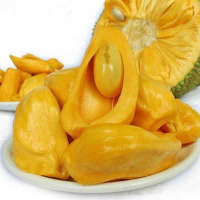 海南菠萝蜜  15斤以上