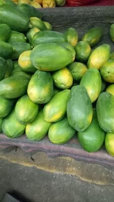 海南省海南省琼海市红心木瓜 2.5 - 3斤