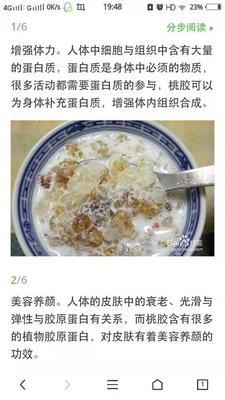 这是一张关于食用桃胶 18-24个月 的产品图片