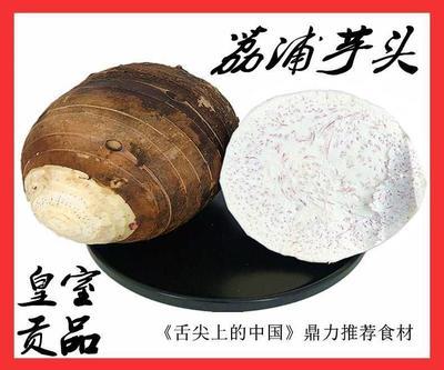 广西壮族自治区桂林市象山区荔浦芋头 6cm以上