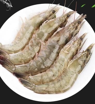 湖北省十堰市茅箭区南美对虾 人工殖养 3-5钱