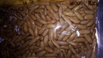 河北省石家庄市鹿泉区巴西松子 6-12个月 包装