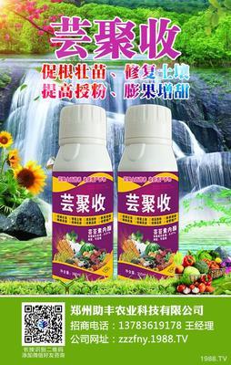 河南省开封市龙亭区其它农资 土壤处理型植物调节剂