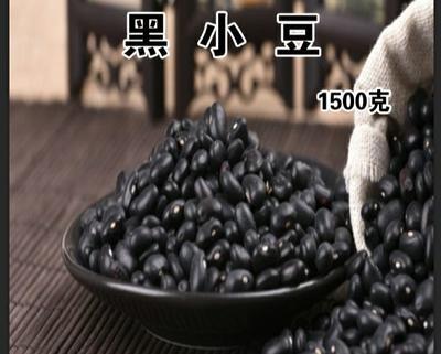 黑龙江省鸡西市密山市小黑豆