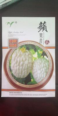 山东省潍坊市昌乐县苹果苦瓜种子 袋装