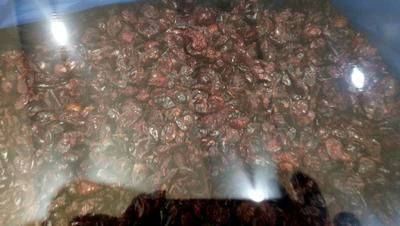 河北省石家庄市鹿泉区蔓越莓干  小个