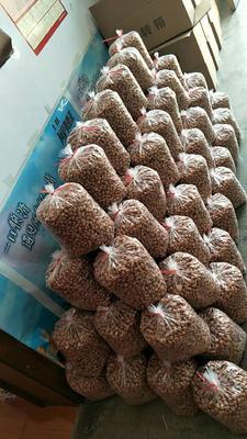 安徽省合肥市包河区蜂蜜花生 6-12个月 袋装