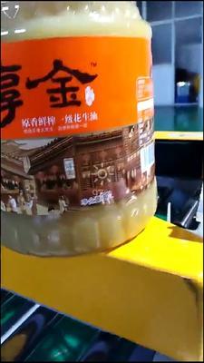 山东省青岛市崂山区压榨花生油