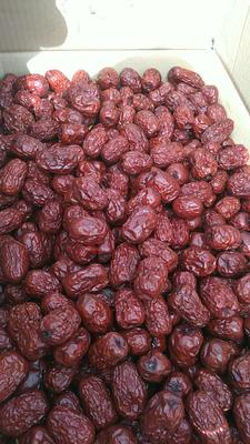 新疆维吾尔自治区新疆维吾尔自治区阿拉尔市灰枣 合格品