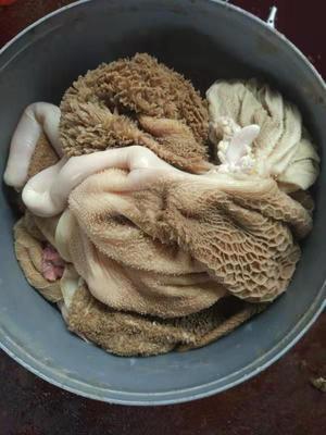 山东省菏泽市郓城县羊肚