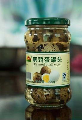 辽宁省丹东市凤城市鱿鱼罐头 6-12个月 五香鹌鹑蛋质好价优