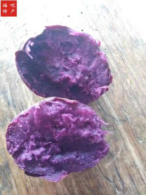 湖南省永州市宁远县紫罗兰紫薯 混装通货