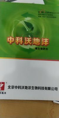 山东省枣庄市滕州市其它农资