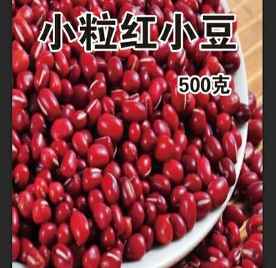 黑龙江省鸡西市密山市大红豆