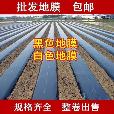 安徽省合肥市包河区降解地膜