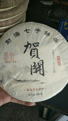 云南省西双版纳傣族自治州勐海县贺开古树 特级 散装