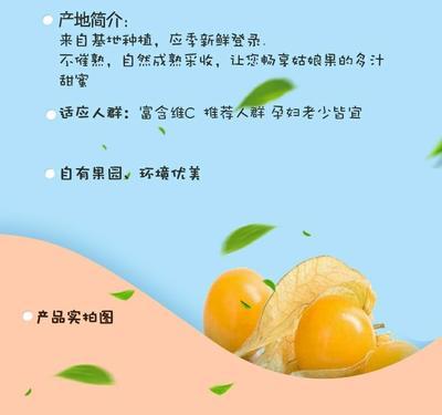 广东省潮州市湘桥区菇娘