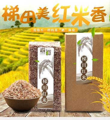 广西壮族自治区桂林市龙胜各族自治县有机红米