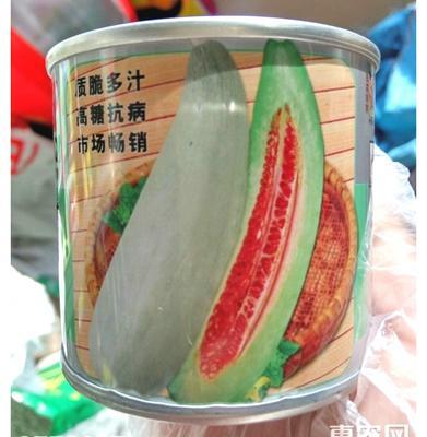 江苏省宿迁市沭阳县羊角蜜甜瓜种子 亲本(原种) ≥90%