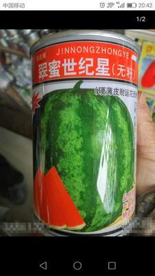 江苏省宿迁市沭阳县无籽西瓜种子 二倍体杂交种 ≥85%