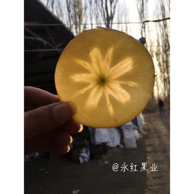 黑龙江省哈尔滨市南岗区阿克苏冰糖心苹果 85mm以上 片红 光果