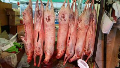 内蒙古自治区呼和浩特市赛罕区白条羊 生肉