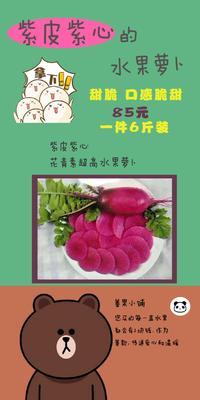 北京丰台区水果萝卜 1~1.5斤