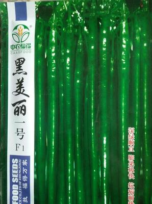 河南省商丘市睢阳区线椒种子 杂交种 ≥85%