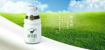 江西省吉安市吉州区羊奶 冷藏存放 15天