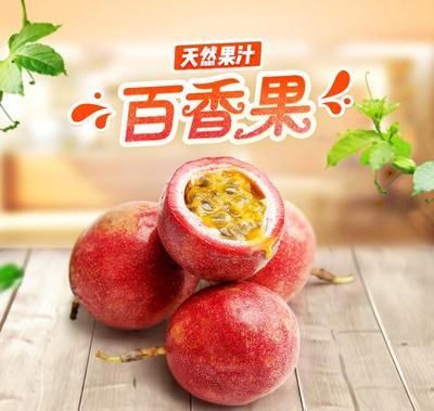 河南省洛阳市栾川县紫红色百香果 80 - 90克