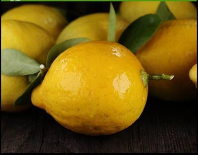 广东省江门市新会区黄柠檬 1.6 - 2两 12个