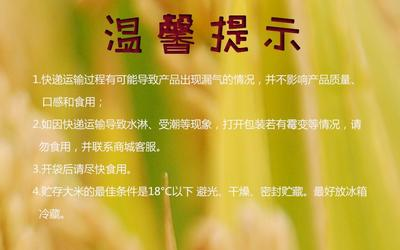 广东省广州市海珠区五常大米 一等品 晚稻 籼米