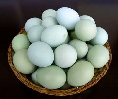 广西壮族自治区百色市西林县白鸭蛋 食用 散装