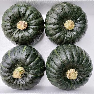 山东省潍坊市寿光市贝贝南瓜 1斤以下 5斤,一件代发包售后