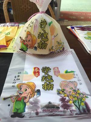 福建省漳州市平和县琯溪蜜柚 2斤以上