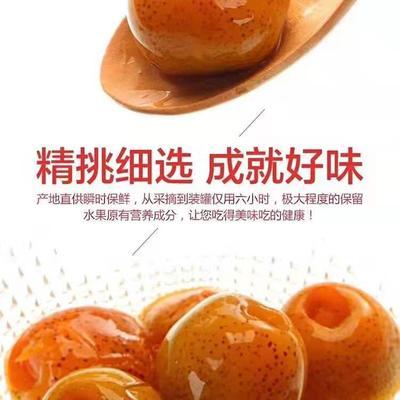 山东省临沂市平邑县山楂罐头 24个月以上