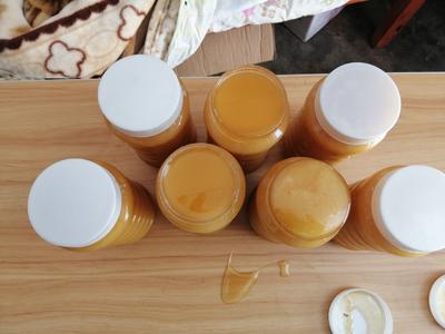 云南省昆明市富民县土蜂蜜 塑料瓶装 2年以上 100%