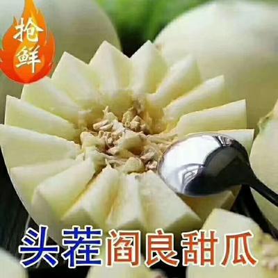 陕西省西安市阎良区阎良甜瓜 1斤以上
