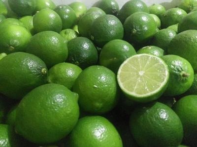 广西壮族自治区桂林市临桂县越南青柠檬 1.6 - 2两