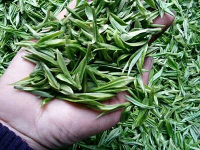 安徽省黄山市黄山区高山野生茶 一级 礼盒装