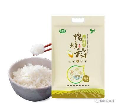 湖北省荆州市沙市区稻鸭共生有机大米 一等品 早稻 粳米