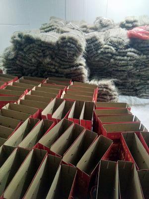 河北省邯郸市复兴区红薯粉