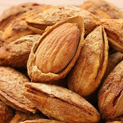 质量保证新疆薄皮巴旦木全国服务售后
