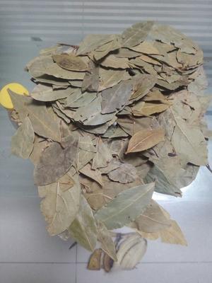 河北省保定市安国市香叶 月桂叶炖肉粉